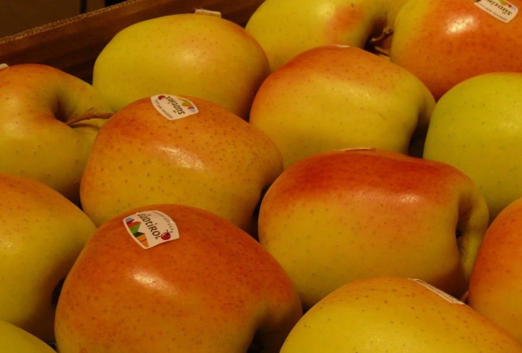 Minimalne zapasy jabłek. Ostatnie 4 tony Gali