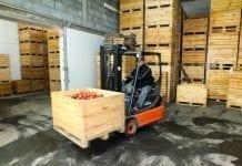 Zapasy jabłek w Polsce i Europie według WAPA – stan na 1.01.2020