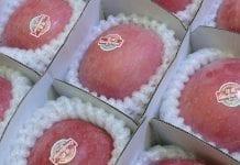 Chińczycy zaskoczyli świat sprzedając jabłka. 60 mld w kilka godzin