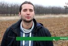 Komunikat jagodowy – Michał Malicki: Nawożenie startowe roślin jagodowych