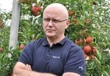 Nowy standard w ochronie przed parchem jabłoni i gruszy