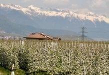 Tyrol Południowy – ile musi się zmienić…