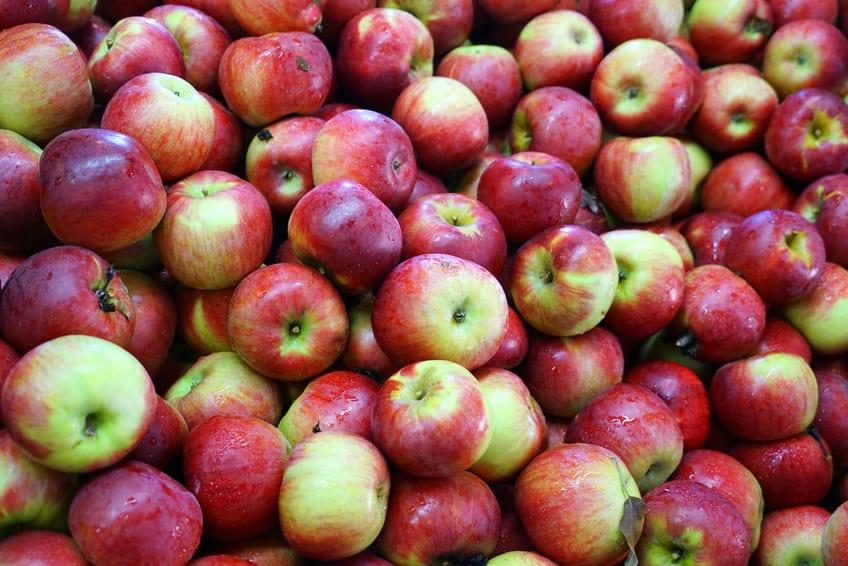 WAPA: zapasy jabłek w Europie w kwietniu