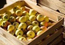 Hurtowe ceny jabłek i gruszek w czwartym tygodniu kwietnia