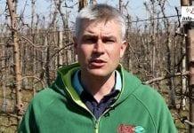 Komunikat sadowniczy 09.04.2018 – Robert Binkiewicz o ochronie sadów ziarnkowych i pestkowych
