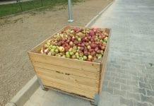 3 sierpnia strajk ostrzegawczy sadowników przez przetwórnią w Kozietułach