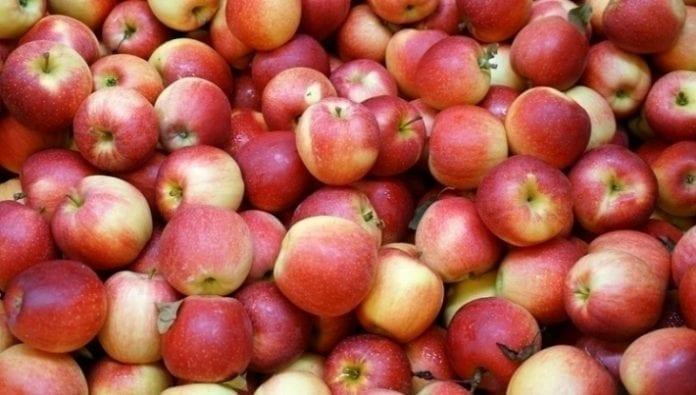 Eksport mołdawskich jabłek
