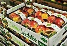 Jabłko Lubelskie dostępne w Biedronce