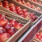 Eksport ratuje ukraińskich sadowników