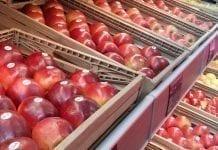 Ukraina bez importu jabłek