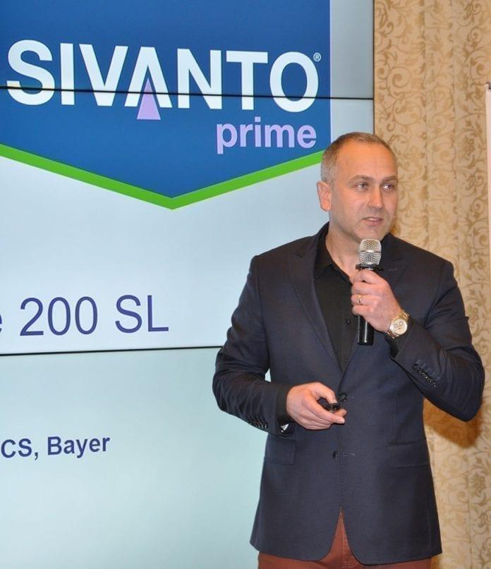 Oferta firmy Bayer na 2019 rok