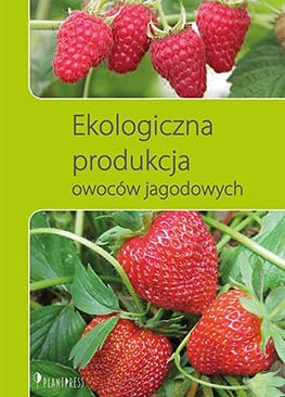 Ekologiczna produkcja owoców jagodowych