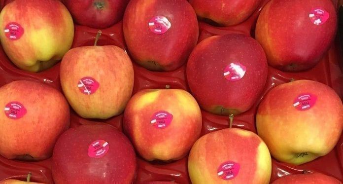 Polskie jabłka - czy dotrą do Indii ?