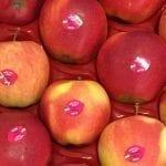 Ukraińcy o polskim eksporcie jabłek