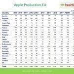 Rynek jabłek i gruszek w Unii Europejskiej