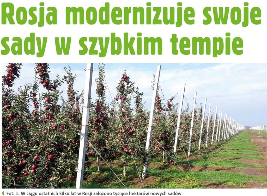 Rosja modernizuje swoje sady w szybkim tempie