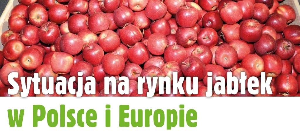 Sytuacja na rynku jabłek w Polsce i Europie - MPS SAD 3/2019