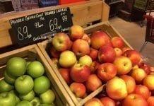 Zbiory jabłek na Białorusi a polski eksport w sezonie 2019/20