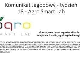 Komunikat jagodowy Agro Smart LAB