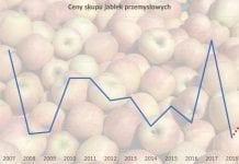 Ceny jabłek muszą pójść w górę, ale to zależy od sadowników!