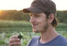 Poprawa jakości owoców dzięki technologii ProNutiva
