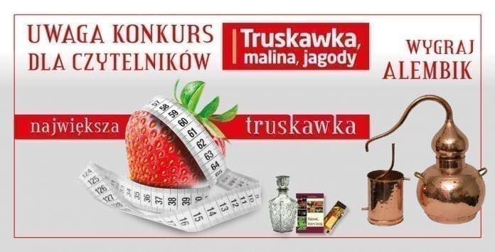 Konkurs truskawkowy