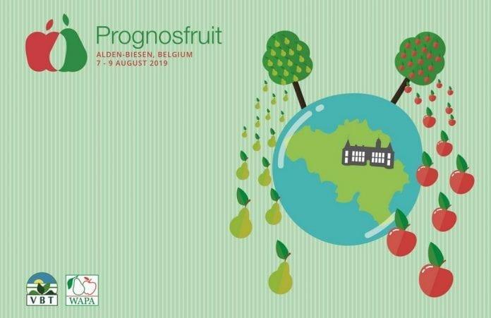 Ile będzie jabłek i gruszek w Europie? Czekamy do 8 sierpnia