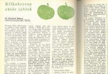 """Z sadowniczego archiwum – 40 lat temu też połowa jabłek szła na """"przemysł"""""""