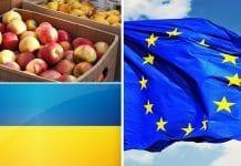 Zablokowany import ukraińskich owoców i warzyw do UE