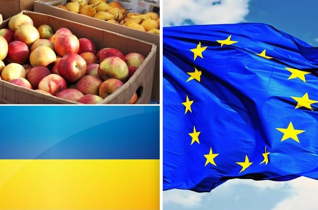 Eksport ukraińskich owoców i jagód