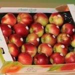 Wzrost cen i spadek konsumpcji owoców w Rosji