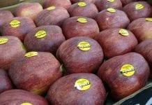 WAPA: zapasy jabłek w marcu