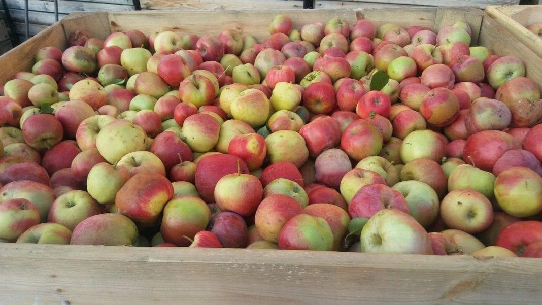 Chcą usunąć T.B Fruit z rynku mołdawskiego