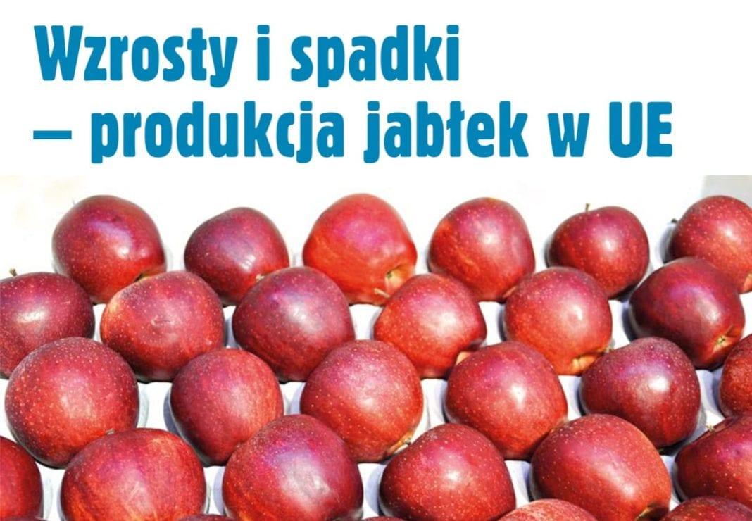 Wzrosty i spadki - produkcja jabłek w UE