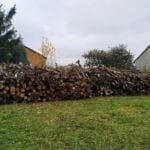 Sprzedam drewno – karczowanie starych kwater