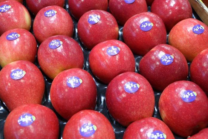 Jabłka Jazz - odmina klubowa