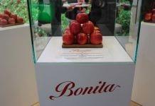 Odmiana Bonita® – charakterystyka
