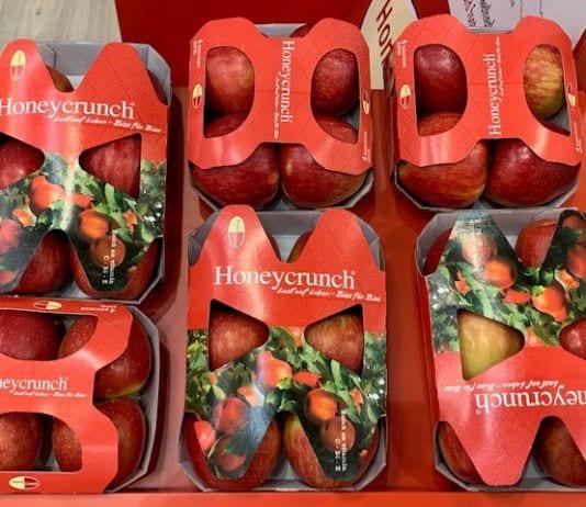 Dlaczego w Berlinie nikt nie mówił o jabłku przemysłowym? FruitLogistica 2020 już za nami!
