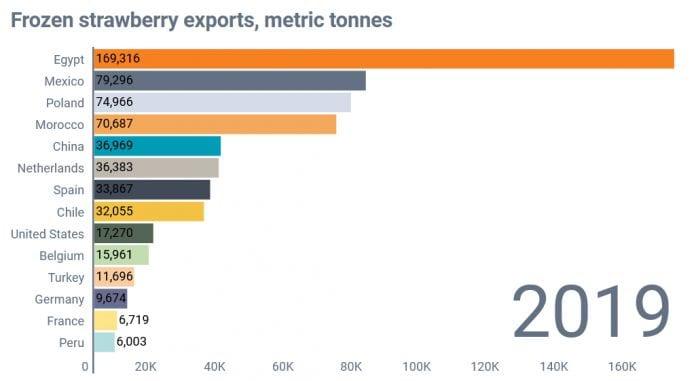 Wysokie ceny egipskich truskawek zrodlo Global Trade Tracker