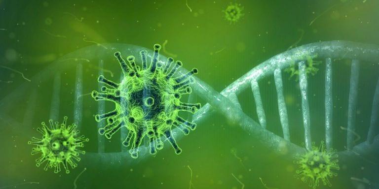 Jak koronawirus wpłynie na sektor owoców i warzyw?- pierwsze prognozy ekspertów z UE