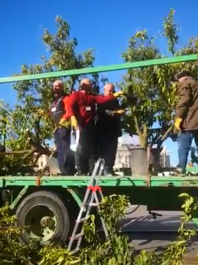 Protesty hiszpańskich sadowników - 15 luty 2020