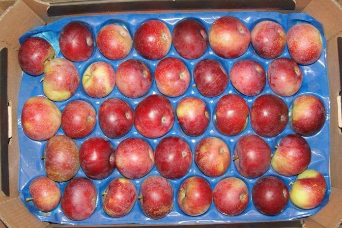 rośnie spożycie polskich jabłek przez koronawirusa