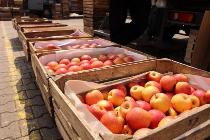 Jabłka na Rynku Hurtowy Bronisze