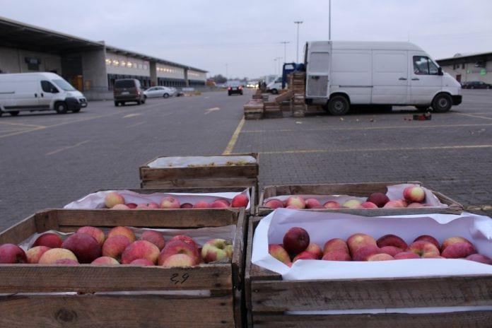 jabłka na rynku hurtowym w sandomierzu