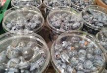 Ceny importowanych malin i borówek w marketach