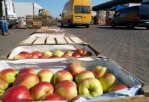 Jabłka idą jak woda – aktualna sytuacja na Broniszach, 21.04.2020