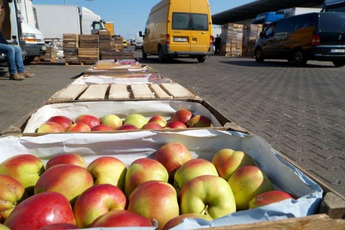 ceny jabłek na broniszach