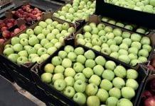 Ceny jabłek w grupach producenckich – nawet 2,50 zł/kg za popularne odmiany
