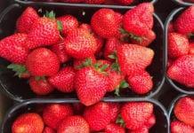 Ceny truskawek 2020. Ile kosztują pierwsze truskawki?