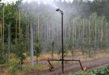 Czy sadownicy w grójeckim muszą ograniczyć zużycie wody?
